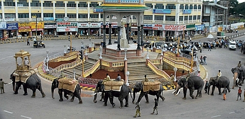 Dussehra elephants practice parade in Mysore city