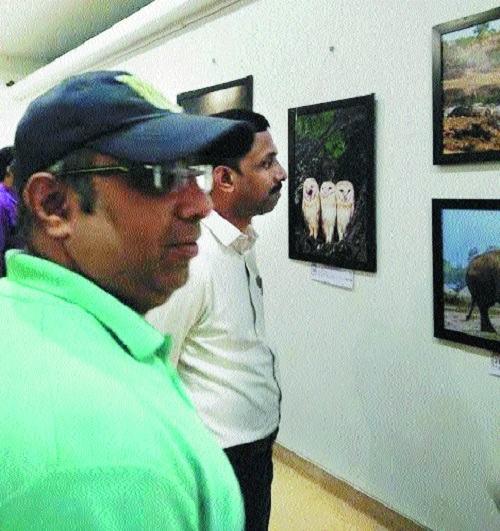 Mumbai's Pradhan wins 1st prize in photography expo