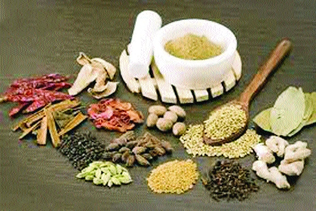 Still no Govt lab to test Ayurveda drugs in State