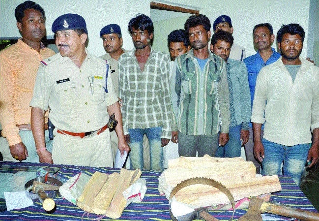 Six sandalwood thieves arrested