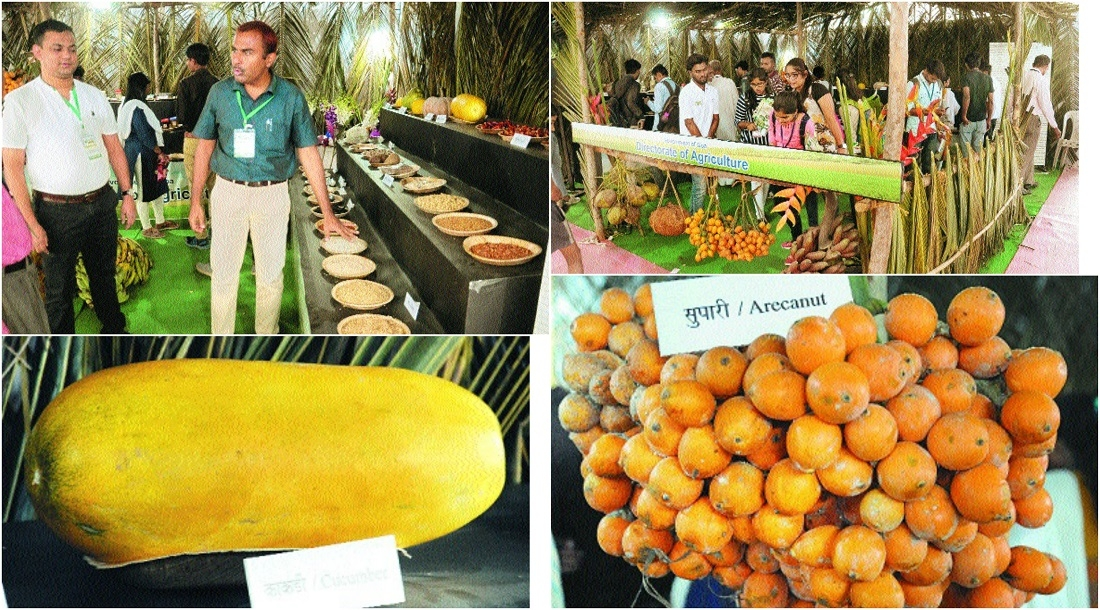 Goan agri-culture on display