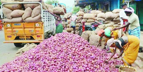 Adequate production of onions brings prices down in Kalamna market