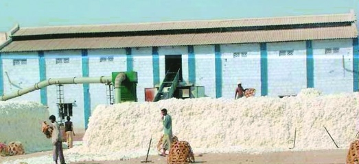 Cotton ginning traders call for strike on Dec 15