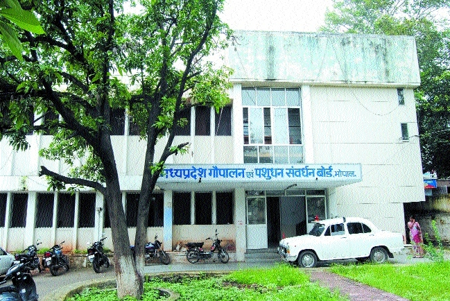 Veterinary Deptt finds it tough to fill up SC, ST doctors' posts