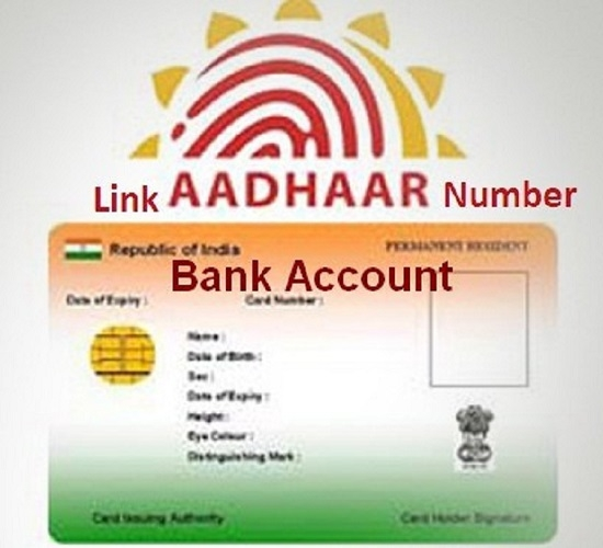 EPFO allows withdrawals from pension a/c without Aadhaar
