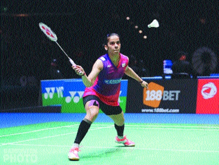 Sindhu, Saina in quarter-finals