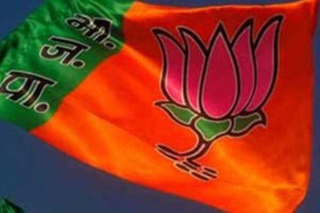 Preparations for Narmada Seva Yatra discussed in BJP meet