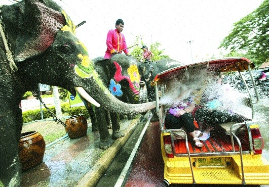 Elephants blow water from its trunk to tourists.jpg