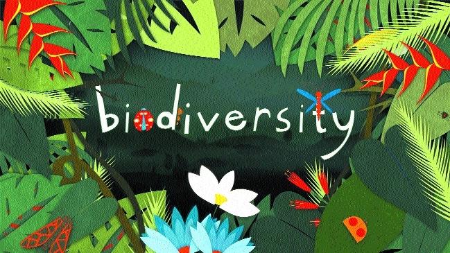 Biodiversity Board facing staff crunch