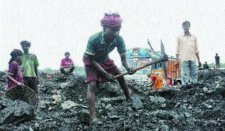 'New coal allocation policy to benefit private independent power plants'