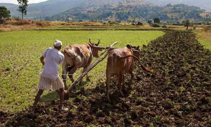 K'taka waives crop loan up to Rs 50,000 per farmer