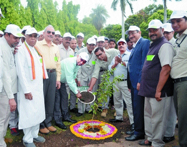 BHEL celebrates Environment Day with tree plantation