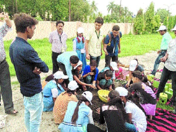 Seed Sowing Day observed at various places