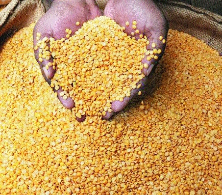 'Lift ban on export of pulses'