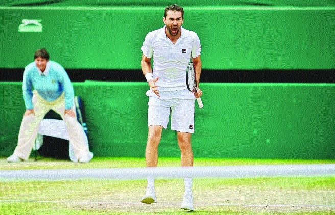 After 11 attempts Cilic reaches final