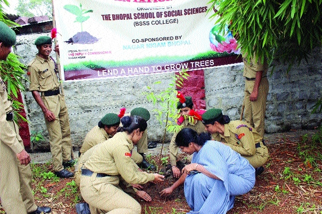 BSSS holds tree plantation drive
