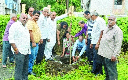 NVCC undertakes tree plantation drive