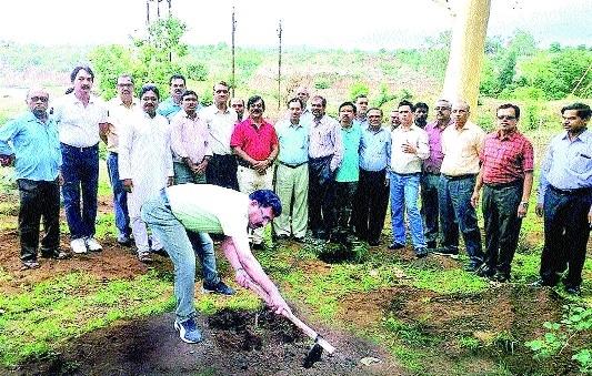 MPPGCL officials plant 350 saplings at Rani Avanti Bai Hydel Power Station