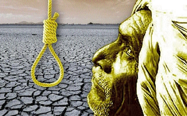 MPHRC notices to 3 Collectors over farmers' suicides in State