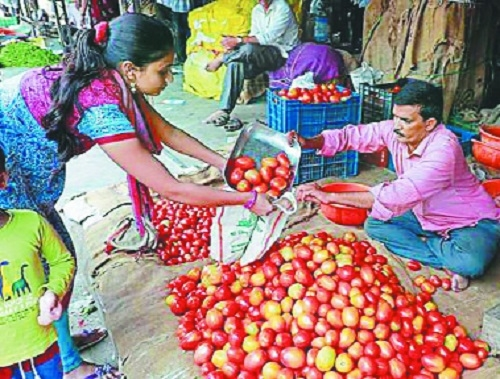Tomato prices skid as supply increases from Andhra Pradesh