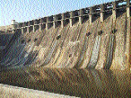 Paddy growers irked as MP Govt stops releasing water from Chourai Dam