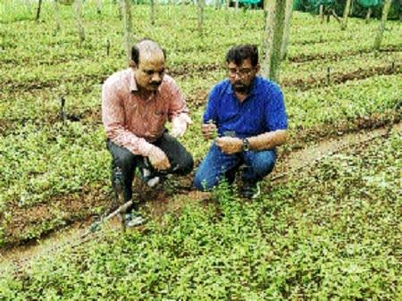 Dr M J Khan visits Maa Danteshwari Herbal Farm