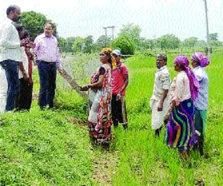 Collector visits scanty rain affected villages