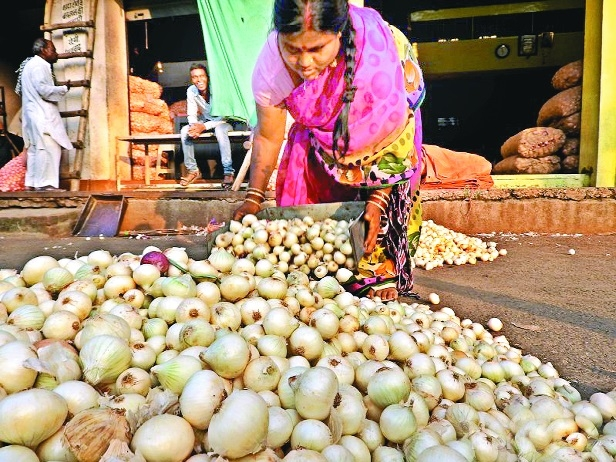 Onion prices climb up to 26/kg at Kalamna
