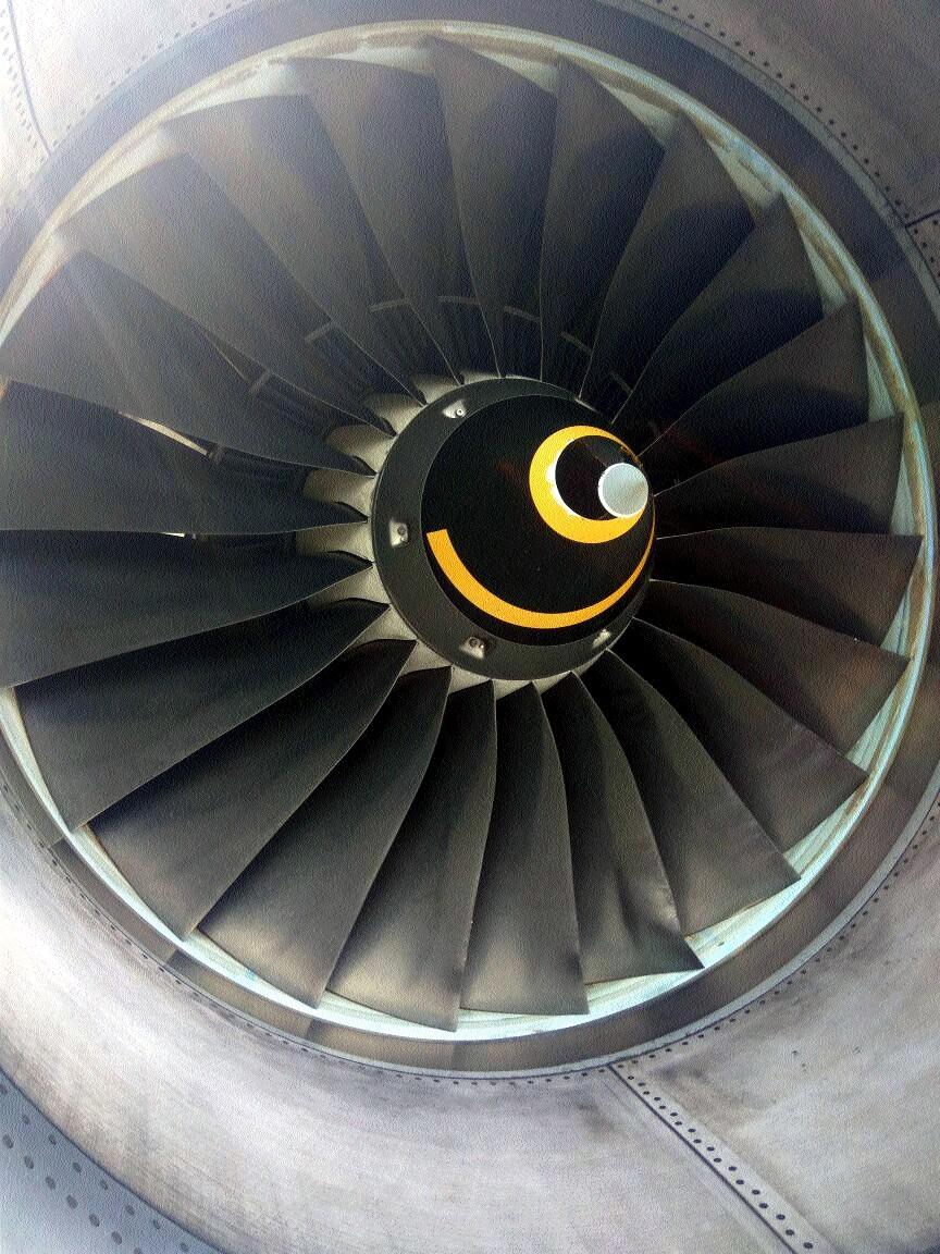 Hyderabad-bound Indigo flight makes emergency landing