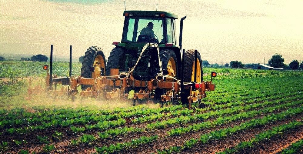 JNAU, MBCFPS initiate farmers training