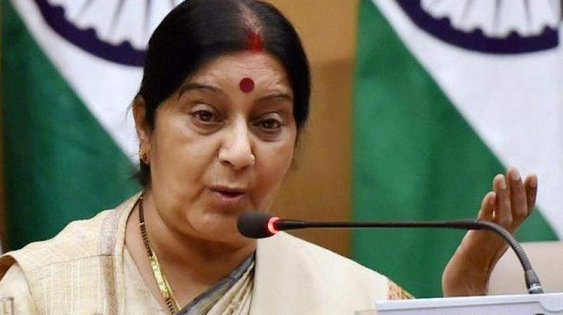 Ready to work above and beyond Paris climate agreement: Sushma
