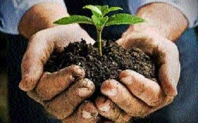 Depleting soil health, cause of grave concern