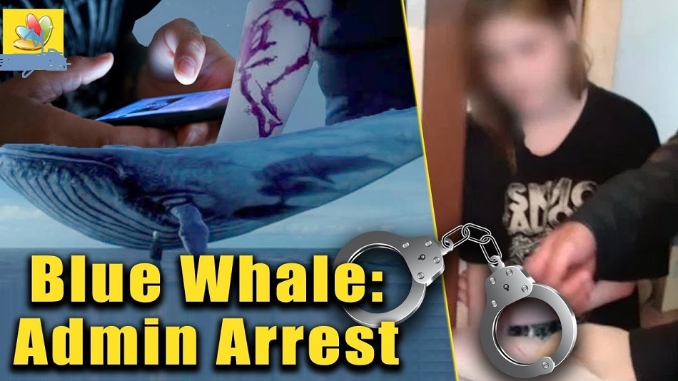 17-yr-old Russian girl, 'mastermind' of Blue Whale game arrested