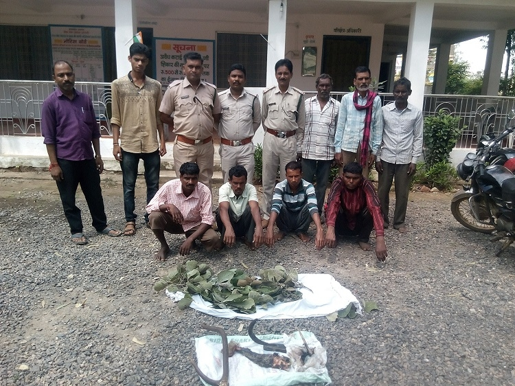 Four arrested for killing spotted deer, cooking its meat