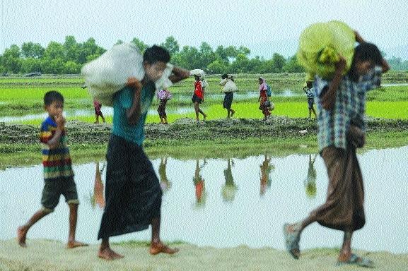 1,64,000 Myanmar refugees have entered Bangladesh: UN