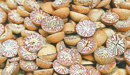 FDA seizes 2,82,771 kgs of adulterated betel nuts worth Rs 4.53 cr in 2 days