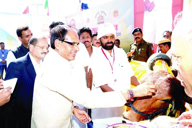 Today's youth have immense power: Chief Minister Chouhan