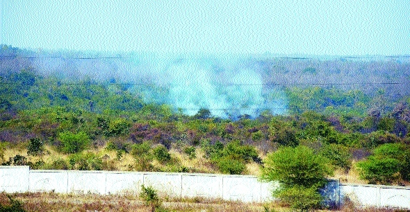 Fire engulfs Gorewada forest again