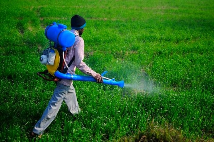 State releases draft of policy for sale of recommended and registered pesticides