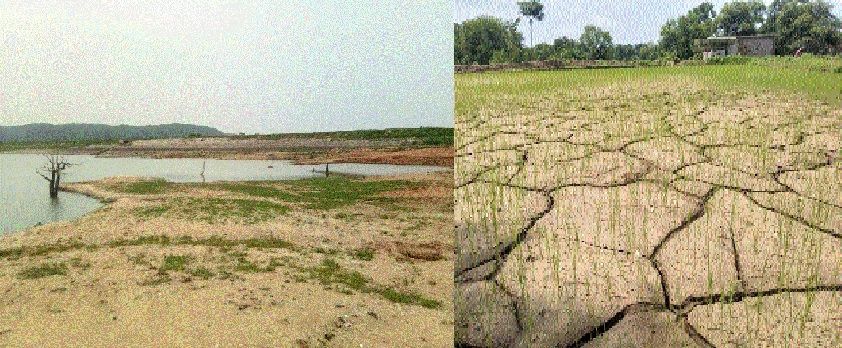 Empty reservoirs paint grim picture for farmers