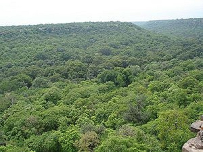Forest Deptt developing ASTRA to verify jungle boundaries in Mah