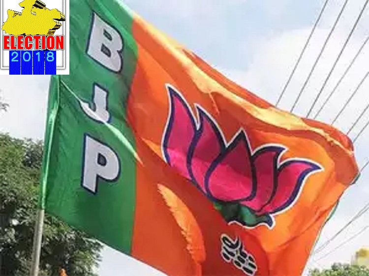 BJP once again looking for clean sweep in Nimad area