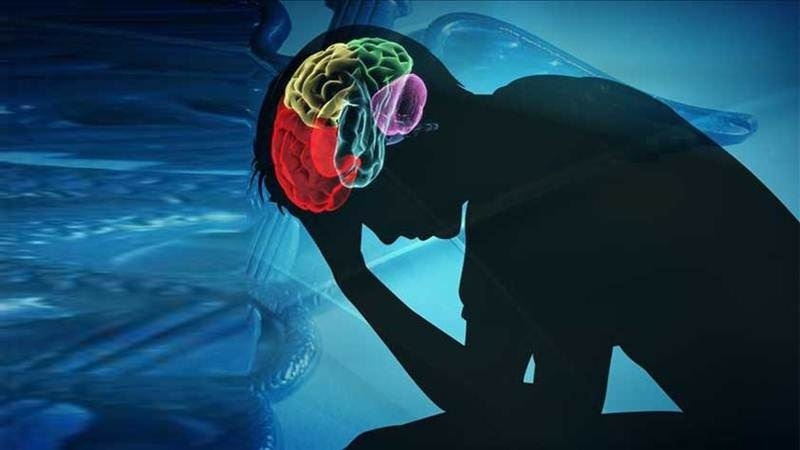 State Govt constitutes Mental Health Authority