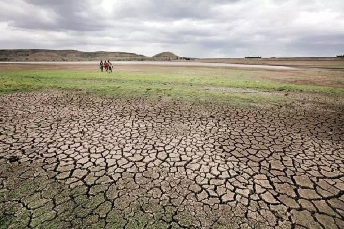 Declare Rs 50,000/Ha aid to drought-hit farmers: Pawar