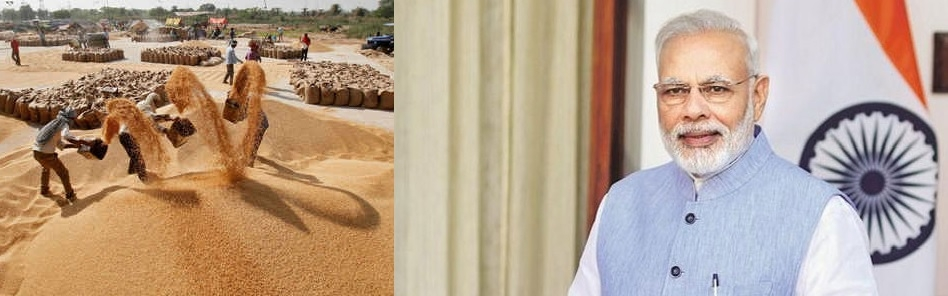 Cabinet hikes wheat MSP by Rs 105/quintal