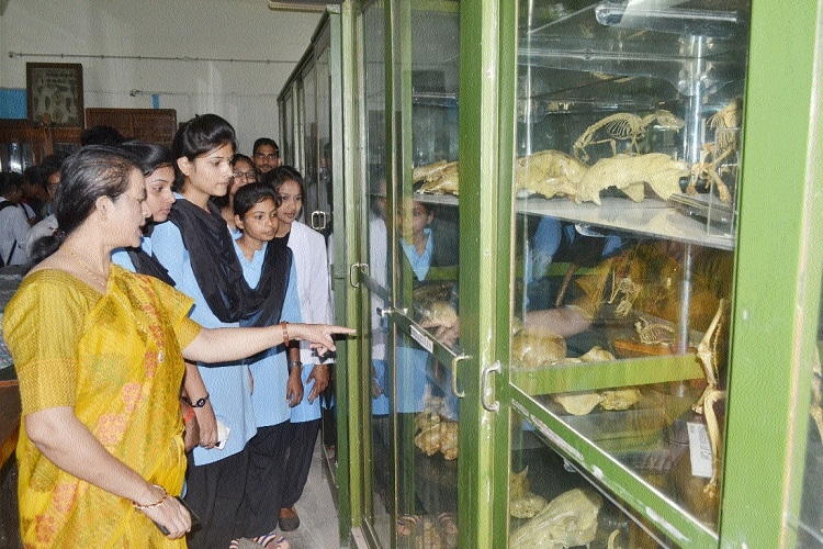 Museum Open Day organised at Govt Model Science College