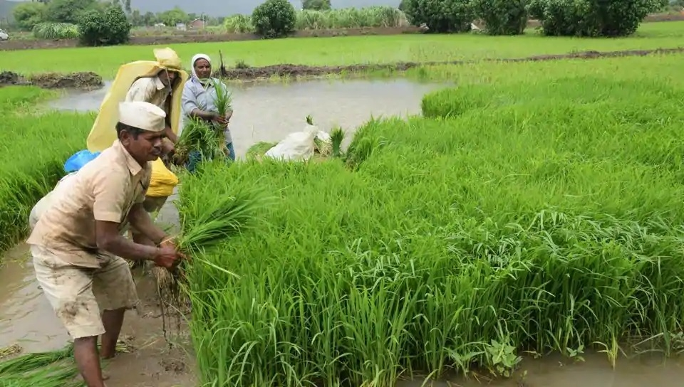 Loan waiver to benefit around 34 lakh farmers