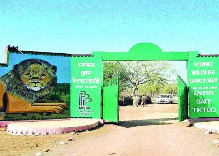 Kuno Palpur Sanctuary likely to get National Park status