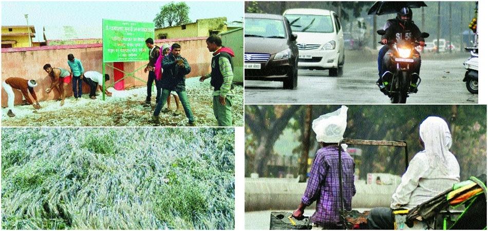 Hailstorm batters crops across Vidarbha region