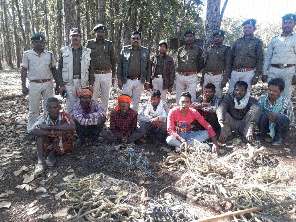 Forest team nabs eight poachers